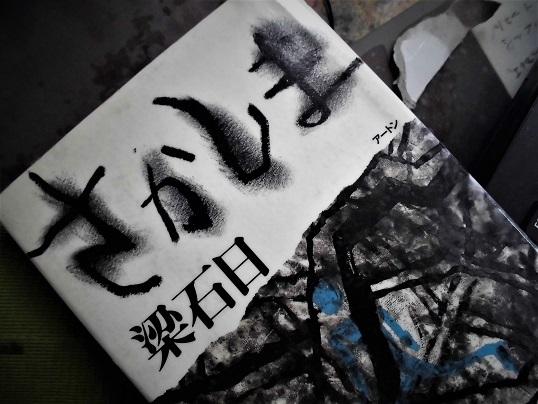 17.6.22 本「さかしま」  (3)