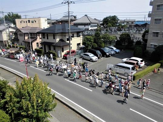 17.7.9 散歩、ハクロ トンボ ほか (35)