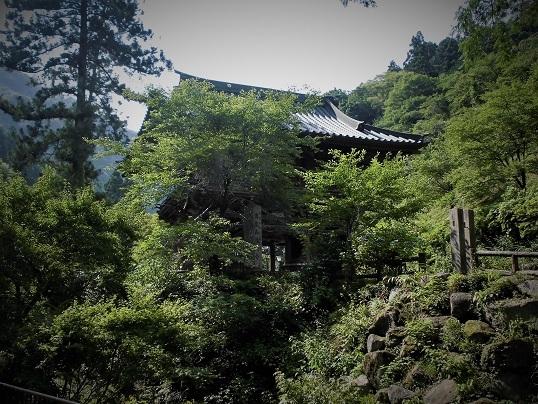 17.7.14-15 甲子温泉旅行 (205)