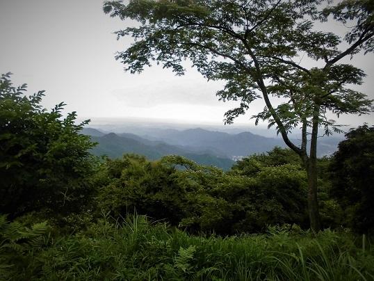 17.7.29 黒山三滝 (26)