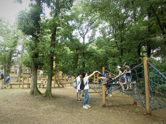 17.8.13 こども自然動物公園 (29)