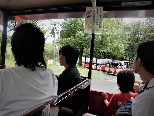 17.8.13 こども自然動物公園 (80)