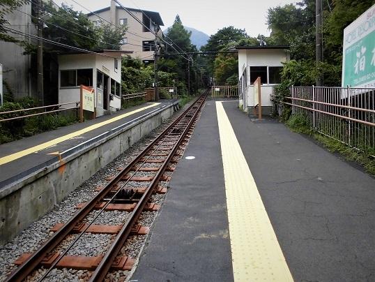 17.8.25-26  箱根ツツジ荘 (85)