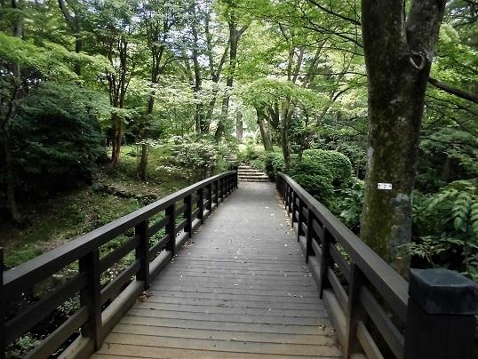 17.8.25-26  箱根ツツジ荘 (73)