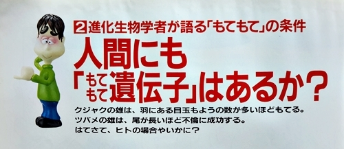 4-男運女運のDNA学01