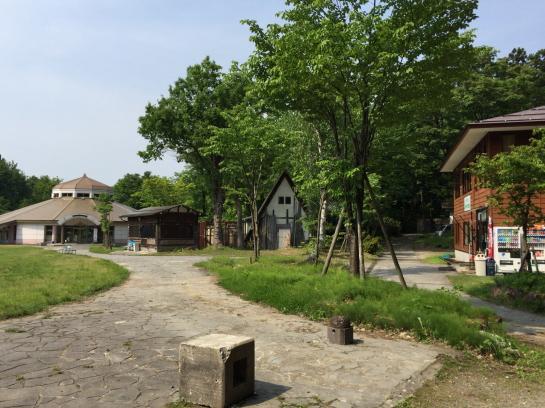 iwasawa0024.jpg