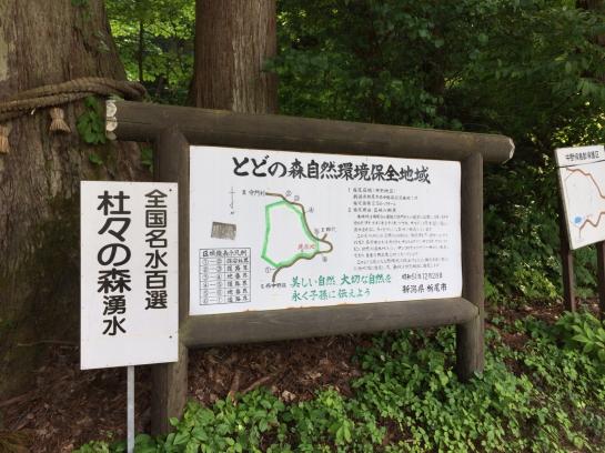 iwasawa0025.jpg