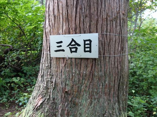 ninouji0021.jpg