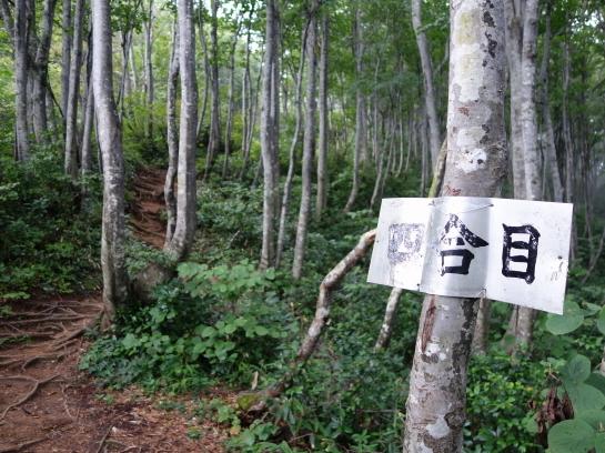 ninouji0023.jpg