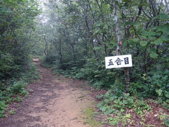 ninouji0025.jpg