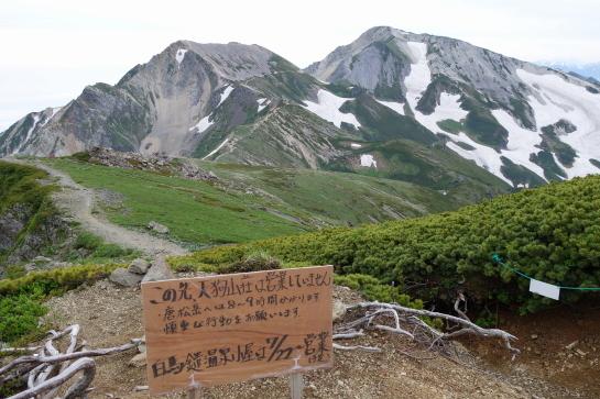 siroumayari1707160012.jpg