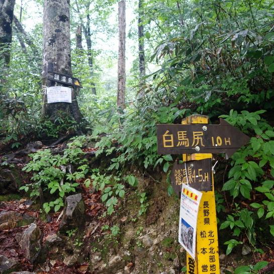 siroumayari1707160222.jpg