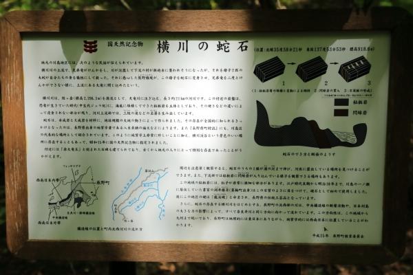 横川川蛇石