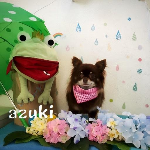 azuki 加賀城