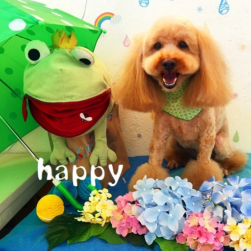 happy 小座