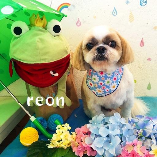 reon 江藤