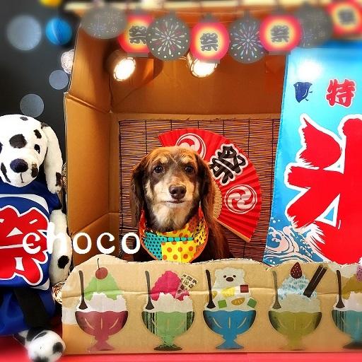 choco 田中