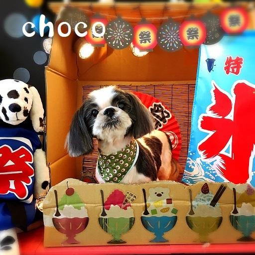 choco 大熊
