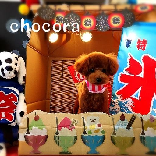 chocora 板谷