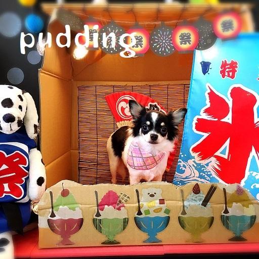pudding 杉本
