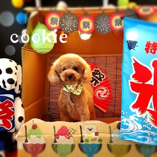 cookie 江藤