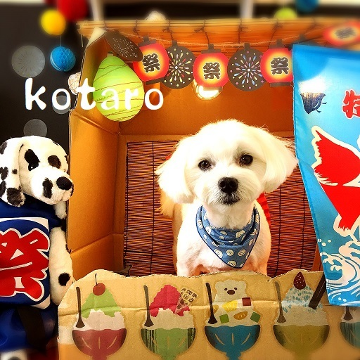 kotaro 西枝