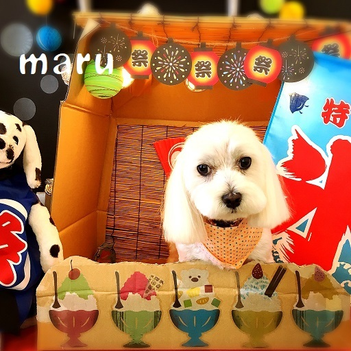 maru 藤沢