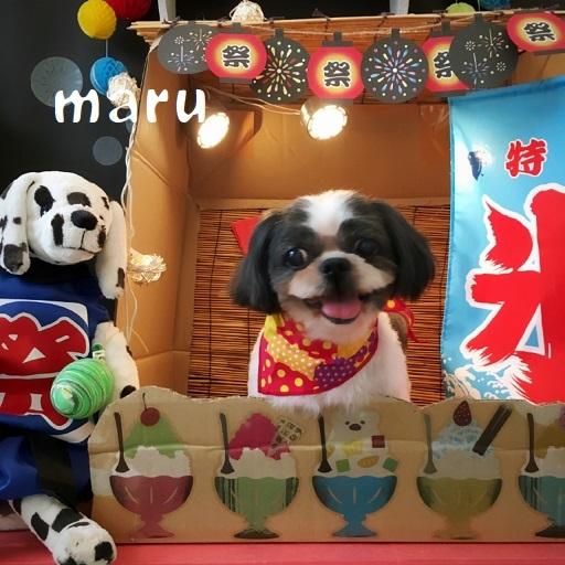 maru 福本