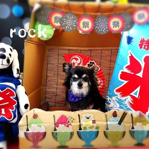 rock 駒井