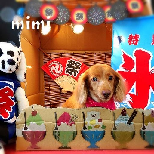 mimi 杉井