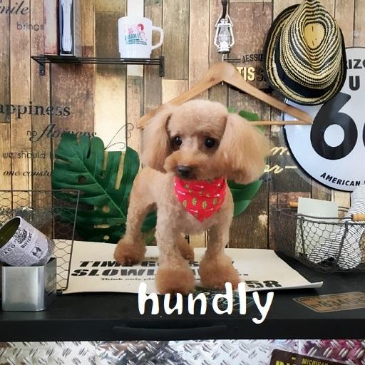hundly 長副