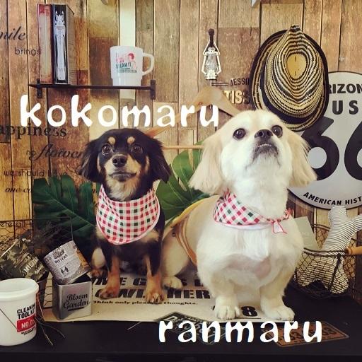 ranmarukokomaru 田中