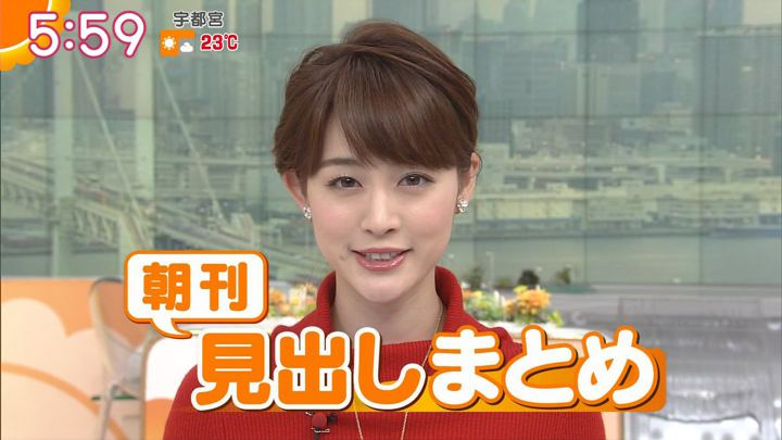 2017年11月03日新井恵理那の画像16枚目