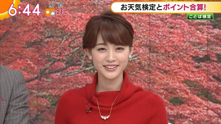 2017年11月03日新井恵理那の画像23枚目