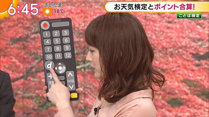 2017年11月09日新井恵理那の画像29枚目