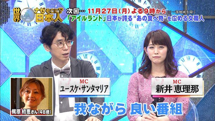 2017年11月13日新井恵理那の画像53枚目