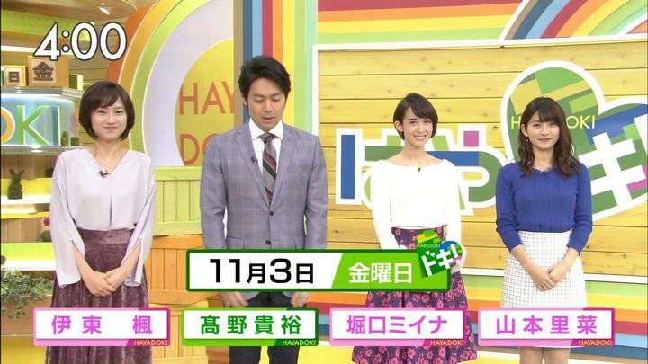 2017年11月03日堀口ミイナの画像01枚目