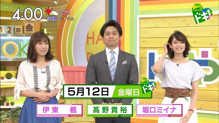 horiguchimiina20170512_01.jpg