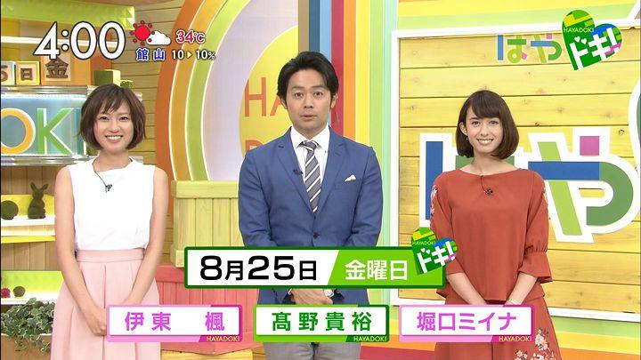 itokaede20170825_01.jpg