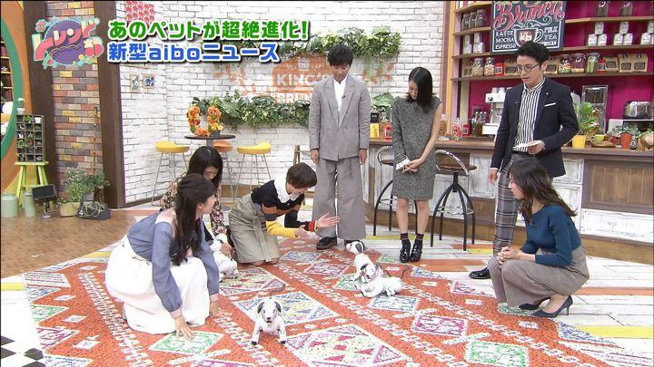 2017年11月11日笹川友里の画像34枚目