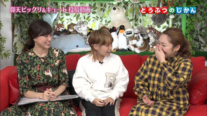 2017年11月13日笹川友里の画像10枚目
