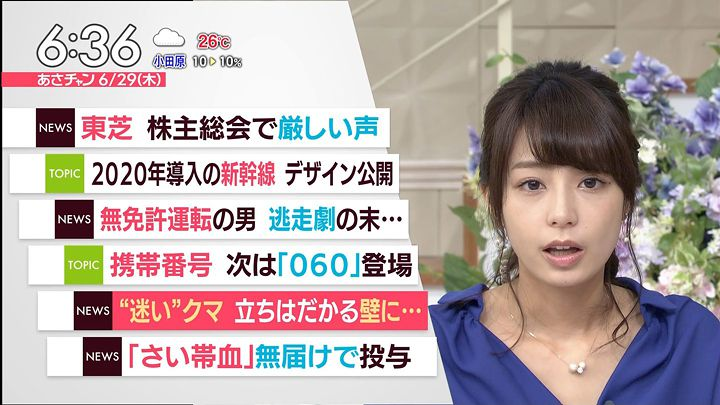 ugakimisato20170629_13.jpg