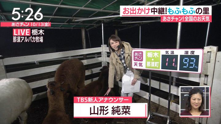 2017年10月13日山形純菜の画像02枚目