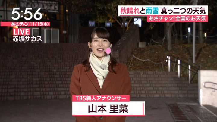 2017年11月15日山本里菜の画像10枚目