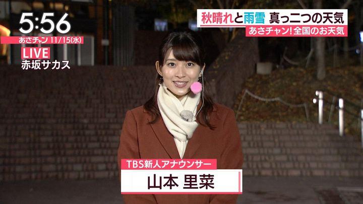 2017年11月15日山本里菜の画像12枚目