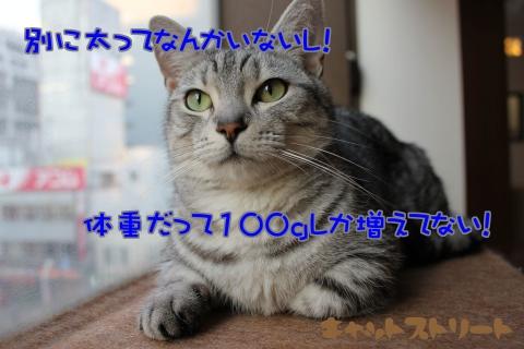 7190.jpg