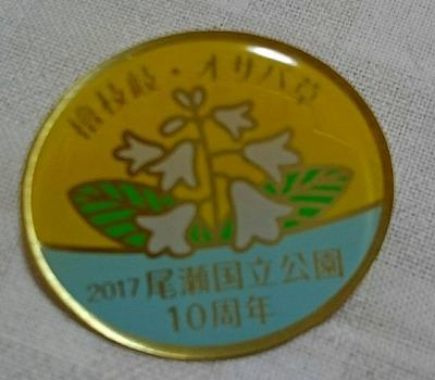 20170610帝釈山 田代湿原 (18)