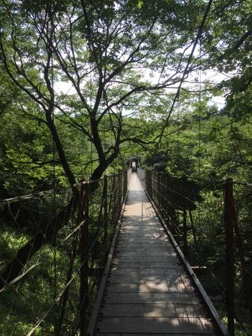 クレマチスの丘 吊り橋