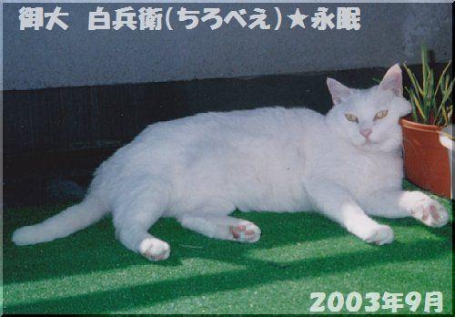 20030901.jpg
