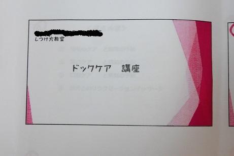 7月30日 ドックケア CIMG4875